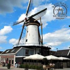 Brouwerij-de-molen-goed-toeven-voor-de-ontspanning-en-gezelligheid