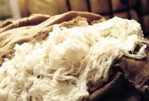 de-juiste-wolkwaliteit-gevonden-rechtstreeks-bij-de-bron